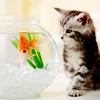 friendlysupport: (Fishy)