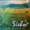 siehn: (love through everything | cling all day)