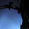 ushahin: (Fetch Flying)