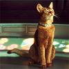 catterspace: (Default)