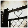 dana_norram: (_iron-heart)