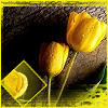 rosethorne: (yellow roses) (Default)