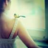 gadgetsandgears: (a little birdie told me)
