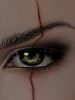 alexis: (Mikhail Eye)