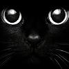 derangedblackkitten: (Cat eyes) (Default)