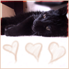 amielleon: My cat. (Cyril: Hearts)