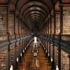 amethystdrop: (library) (Default)