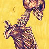 emesis: anatomy: yellow (bases and skeletons;)