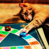 blue_ant: (cat [games])