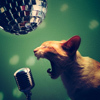 blue_ant: (cat [sing like you're yelling])