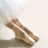 barre_none: (pointe shoes shot)