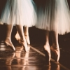 barre_none: (pointe shoes group pretty)