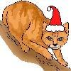 davidcook: (christmascat)