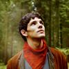 soundoftrees: ([Merlin] Arthur bw)