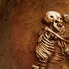 lightupthesun: (bones)
