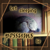 kerravonsen: Let sleeping possums lie - possum sleeping on top of bookcase (possum)