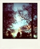 remember: Polaroid picture of sun rising sky through trees, blue and pink against their silhouettes. (Default)