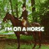aymiah: (TEXT: on a horse)