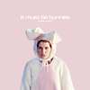 rachg82: (anya bunny suit)