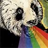 aergonaut: Panda rainbow! (panda!)
