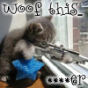 "red_trillium: Macro of a grey kitten with a gun pointed out a window saying ""Woof this"" (Woof this (kitty with a gun))"