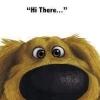 iwoofyou: (Hi There)