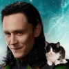 sunnymodffa: Face of Loki, adorable kitten (Loki & Lokitty)