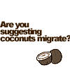 rikke_leonhart: Monty Python - Migrating Coconuts (Monty Python Migrating Coconuts)