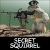 aadler: (squirrel)
