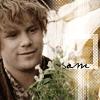 lotrfellowship: (sam)