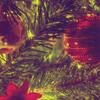 umadoshi: (Christmas - boughs (carolstime))