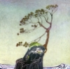 chanderclear: A tree standing alone on a little hill amidst the waves (tree, Kay Nielsen) (Default)