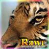 warrame: (rawr)
