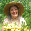 wallace_trust: Me and my plum tree (Me, plums) (Default)