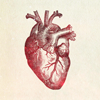 intertribal: (heart)