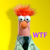 take_the_good: Beaker from The Muppets (Beaker WTF)