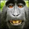 jungle_jim_69: (Selfie: Serious Laugh!)