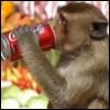 jungle_jim_69: (Thirsty: Drinking)