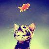 mskatej: (Kitten and fish)