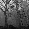 cazrolime: The Slender Man stalking some poor sod through the forest. ((x) . if you go down to the woods)