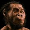 posleshesti: (Homo Naledi)