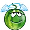 watermelon83: (крылья)