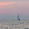 rectificat: (sail)