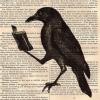 redseagull: raven ()