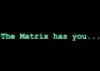 neo_the_chosen1: (The matrix has you)