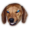 ab_dachshund: (moderatorial_white)