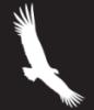 jan_pirx: (Condor)