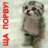 anna_1811: (Гроссмейстер)
