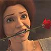 preem_palver: (Фиона  и роза)