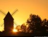 dissimilis_s: (Aquitaine)